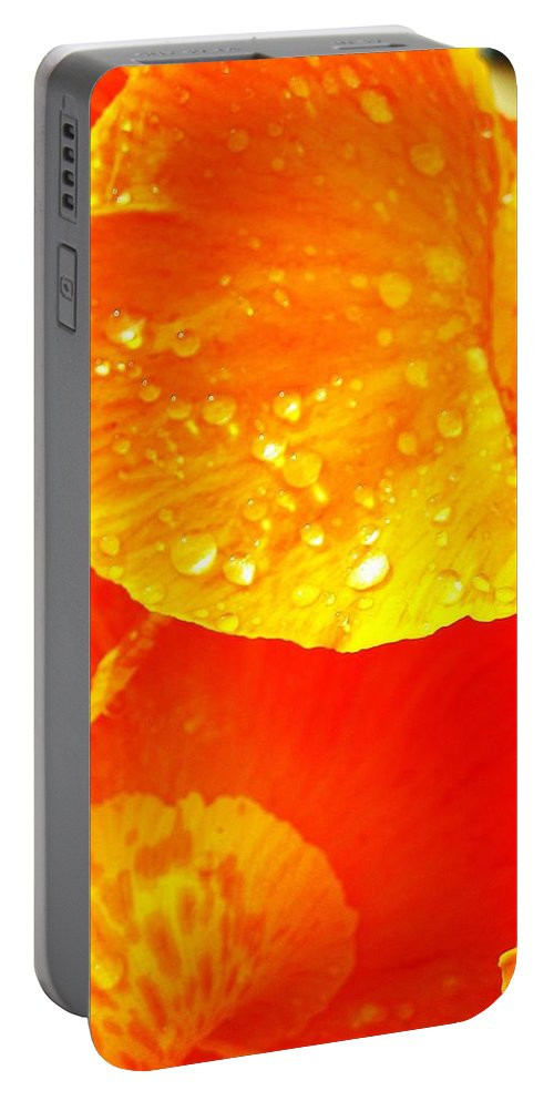 Flower Portable Battery Charger featuring the photograph After The Rain ... by Juergen Weiss