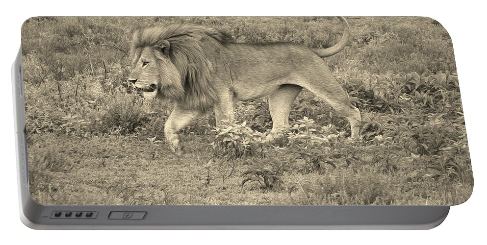 Africa Portable Battery Charger featuring the photograph Afternoon Stroll by Michele Burgess