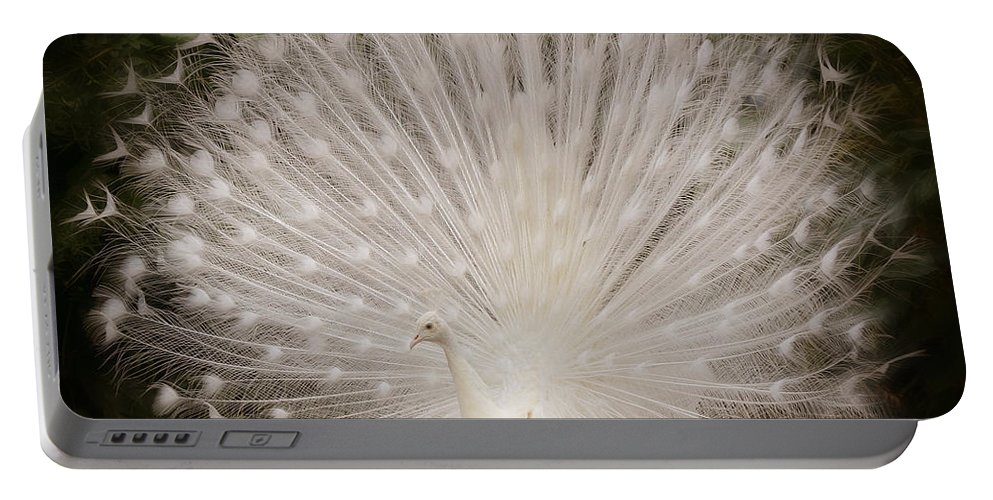 Albino Peacock Portable Battery Charger featuring the photograph Albino Peacock by Joseph G Holland