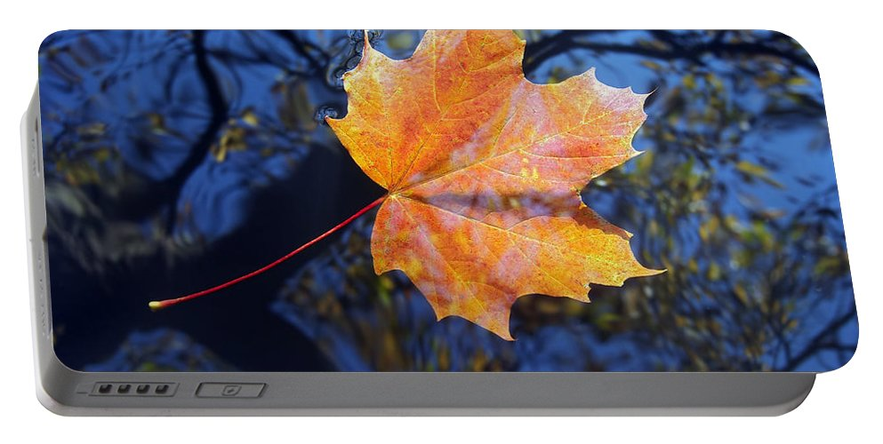 Leaf Portable Battery Charger featuring the photograph All About Autumn by Michal Boubin