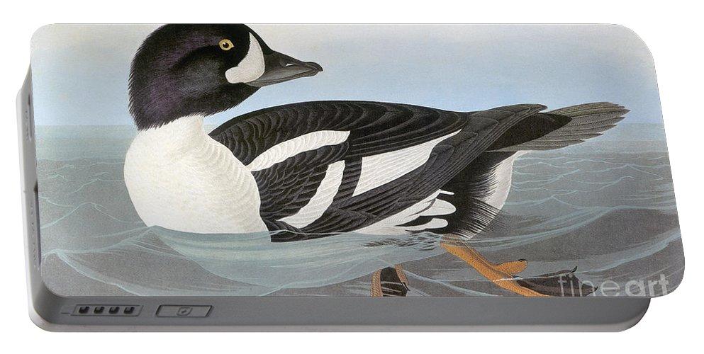 America Portable Battery Charger featuring the photograph Audubon Duck by John James Audubon