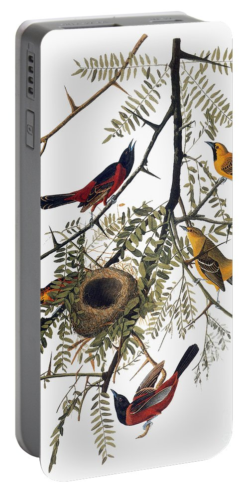 1838 Portable Battery Charger featuring the photograph Audubon: Oriole by Granger