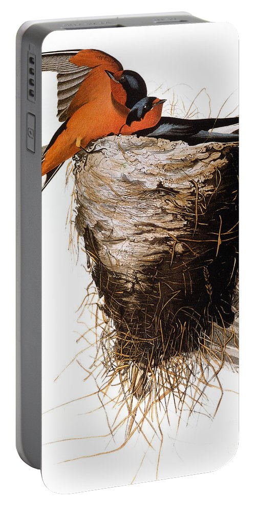 1838 Portable Battery Charger featuring the photograph Audubon: Swallow by Granger