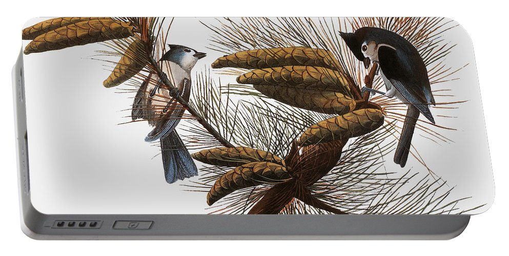 1838 Portable Battery Charger featuring the photograph Audubon: Titmouse by Granger