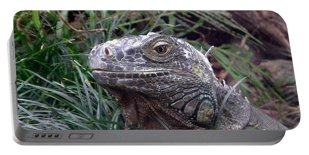 Australia Portable Battery Charger featuring the photograph Australia - Kamodo Dragon by Jeffrey Shaw
