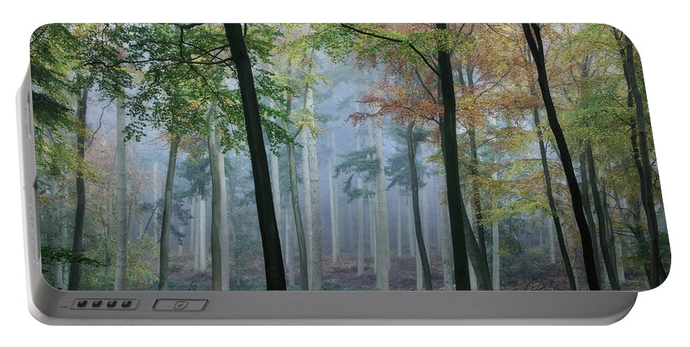 Autumn Portable Battery Charger featuring the photograph Autumn Frame by Ceri Jones