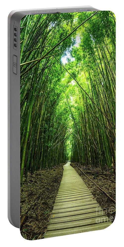 Bamboo Forest Portable Battery Charger featuring the photograph Bamboo Forest by Jamie Pham