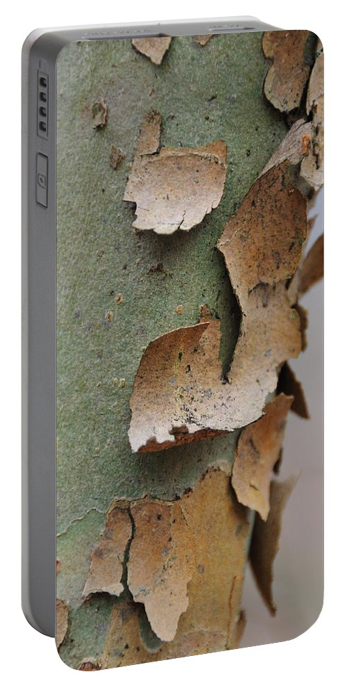 Tree Portable Battery Charger featuring the photograph Bark by David Arment
