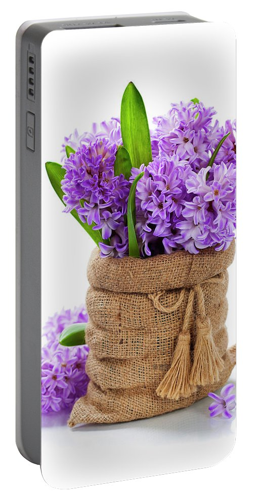Flower Portable Battery Charger featuring the photograph Beautiful Hyacinths by Natalia Klenova