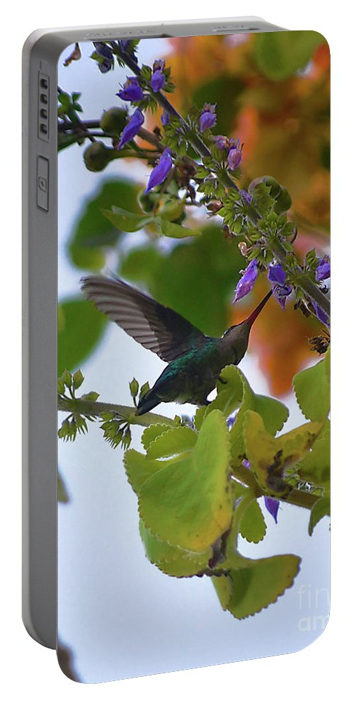 Flowers Portable Battery Charger featuring the photograph Beija-flor by Ana Francisconi