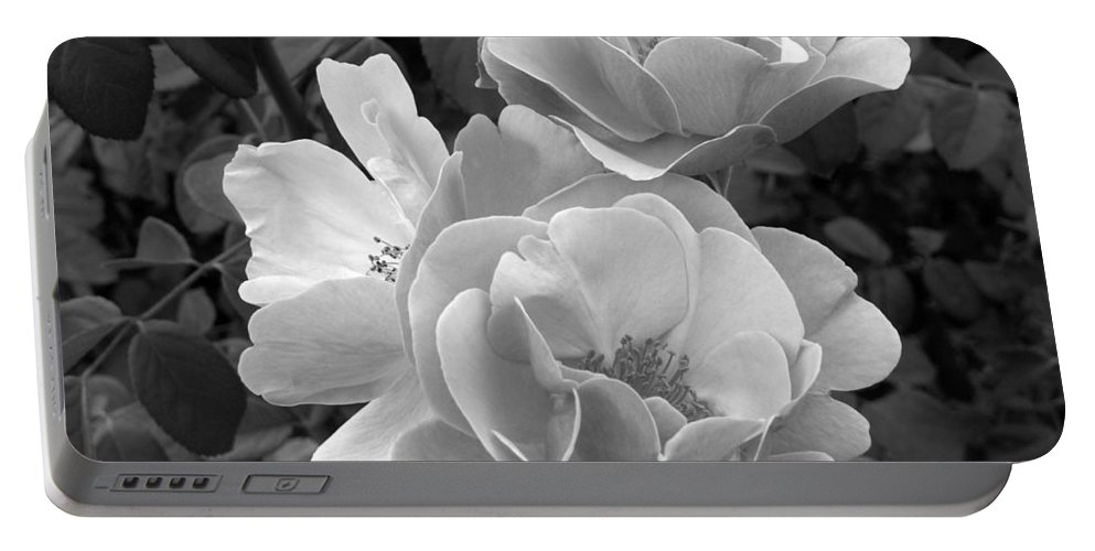 Rose Portable Battery Charger featuring the photograph Black And White Roses 2 by Amy Fose