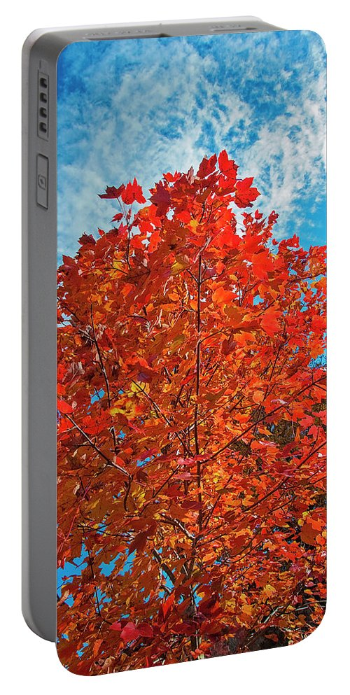 Autumn Portable Battery Charger featuring the photograph Blaze Of Glory by Lynn Bauer