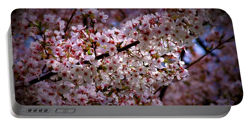 Cheery Portable Battery Charger featuring the photograph Blossoms by Tina Meador