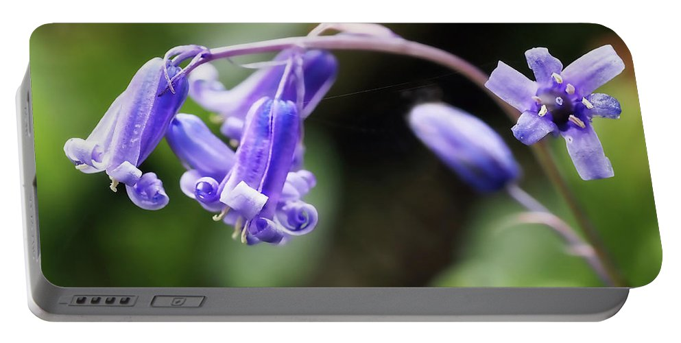 Bluebells Portable Battery Charger featuring the photograph Bluebells by Susie Peek