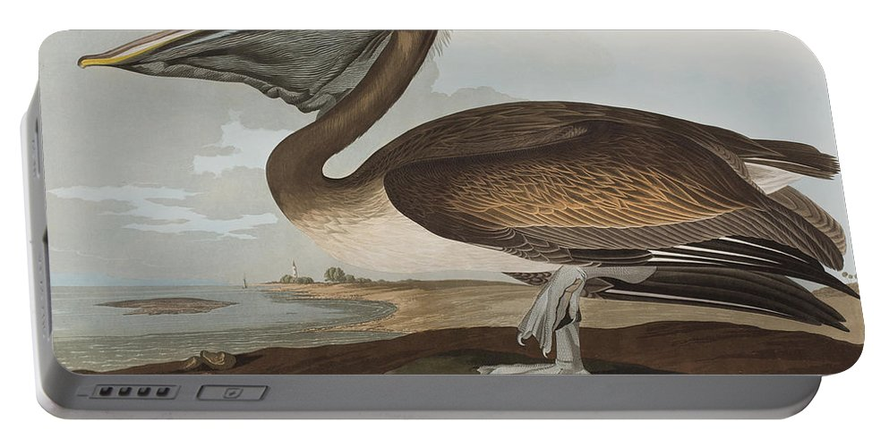 Brown Pelican Portable Battery Charger featuring the painting Brown Pelican by John James Audubon