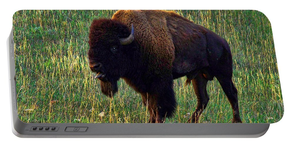 Buffalo Portable Battery Charger featuring the photograph Buffalo Custer State Park by Tommy Anderson