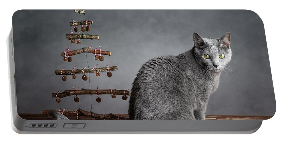 Cat Portable Battery Charger featuring the photograph Cat Christmas by Nailia Schwarz