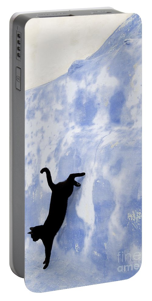 Cat Portable Battery Charger featuring the photograph Cat Jumping From A Wall by Jean-Louis Klein & Marie-Luce Hubert