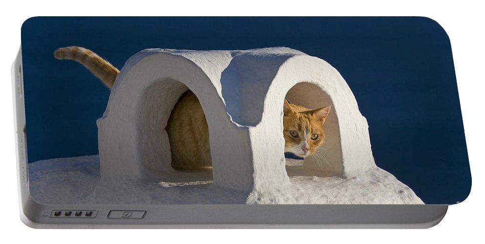 Cat Portable Battery Charger featuring the photograph Cat On A Roof, Greece by Jean-Louis Klein & Marie-Luce Hubert