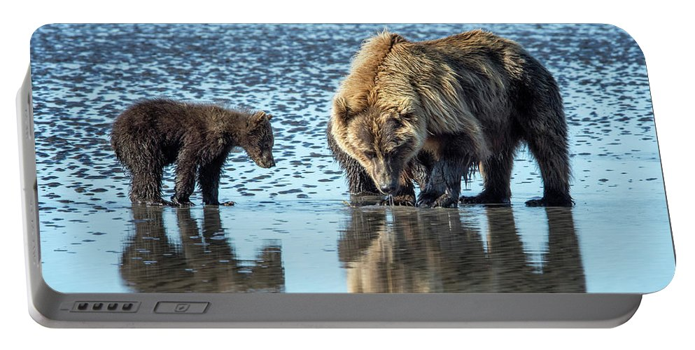 Grizzly Bear Portable Battery Charger featuring the photograph Clamming by Claudia Kuhn