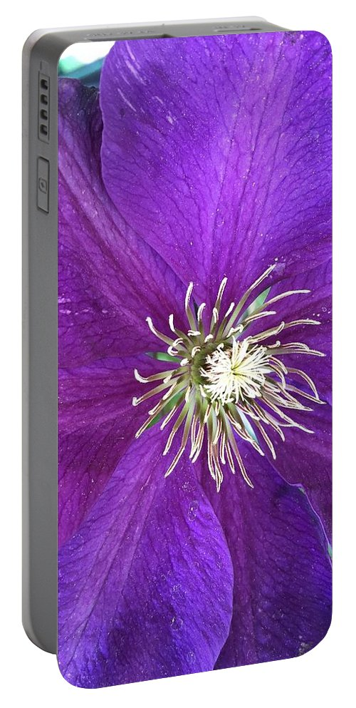 Clarity Portable Battery Charger featuring the photograph Clarity by Shannon Grissom