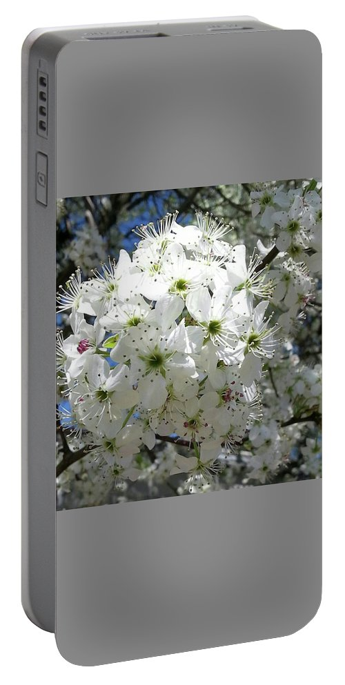 Flower Portable Battery Charger featuring the photograph Crabapple Blossom by Kathy R Thomas