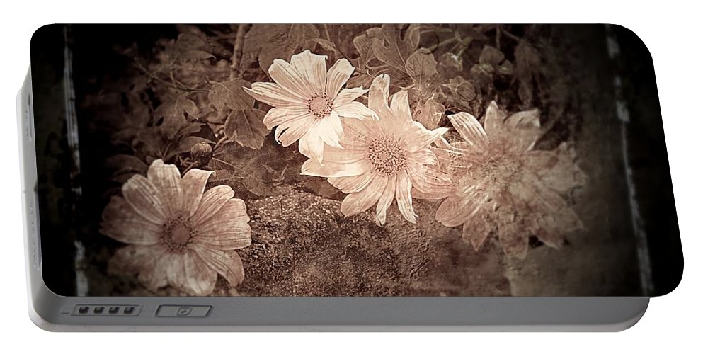 Wild Sunflowers Portable Battery Charger featuring the photograph Cream by Clare Bevan