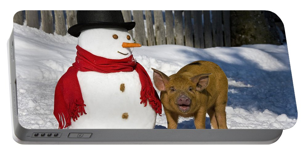 Piglet Portable Battery Charger featuring the photograph Curious Piglet And Snowman by Jean-Louis Klein & Marie-Luce Hubert