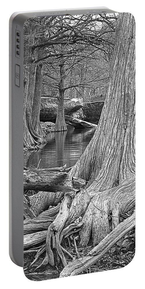 Trees Portable Battery Charger featuring the photograph Cypress Trees I V by Jim Smith