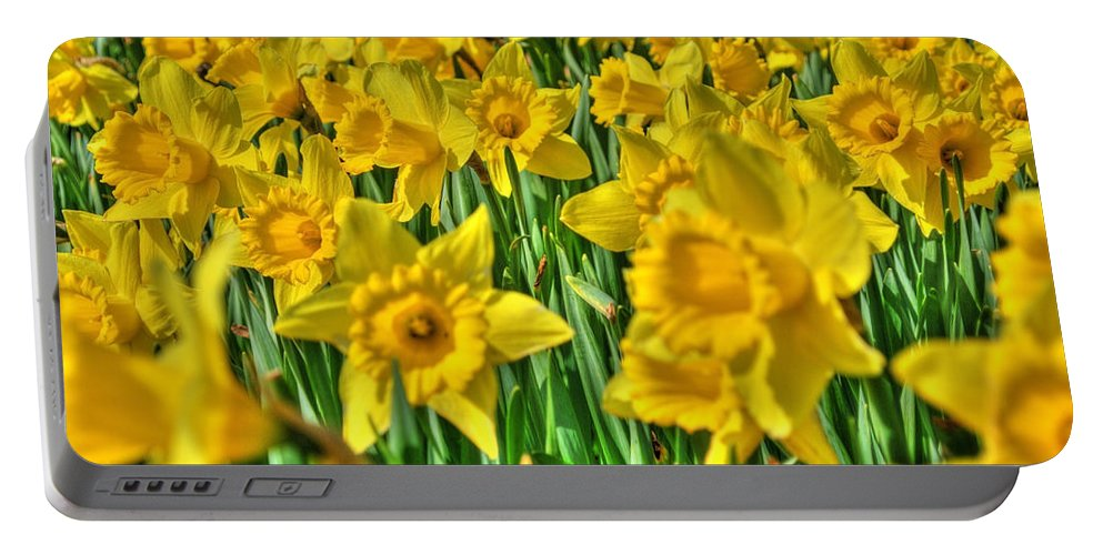 Flower Portable Battery Charger featuring the photograph Daffodils by Svetlana Sewell