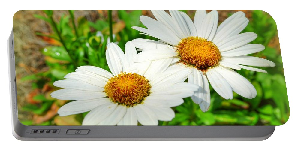 Flower Portable Battery Charger featuring the photograph Daisies by Linda Covino