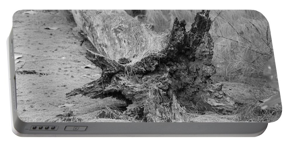 Black And White Portable Battery Charger featuring the photograph Dead Wood by Rob Hans