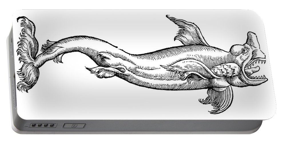 1604 Portable Battery Charger featuring the photograph Dolphin by Granger