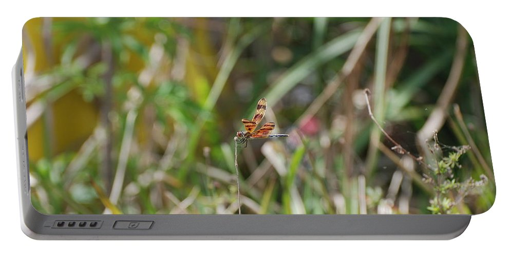 Nature Portable Battery Charger featuring the photograph Dragon Fly by Rob Hans