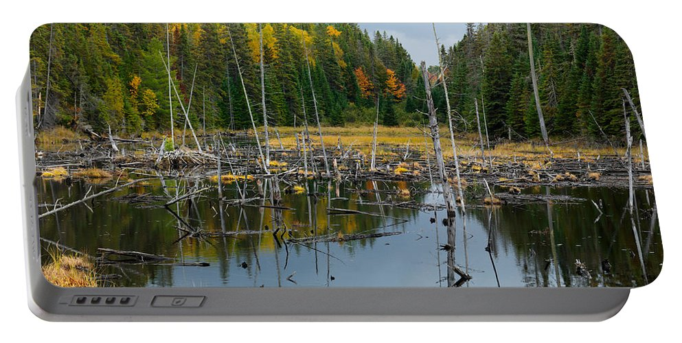 Drowned Trees Portable Battery Charger featuring the photograph Drowned Trees by Oleksiy Maksymenko