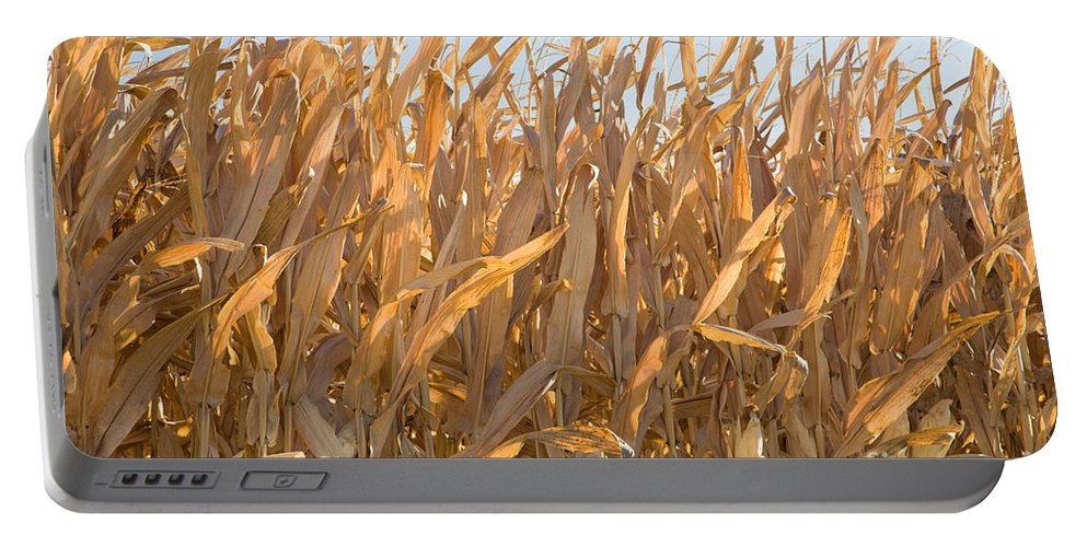 Corn Portable Battery Charger featuring the photograph Dry Corn Stalks by Inga Spence