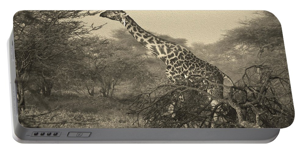 Africa Portable Battery Charger featuring the photograph Emerging From The Morning Mist by Michele Burgess