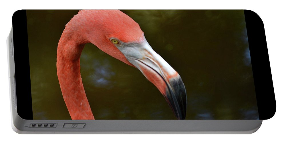 Profile Portable Battery Charger featuring the photograph Flamingo Closeup by Krista Russell