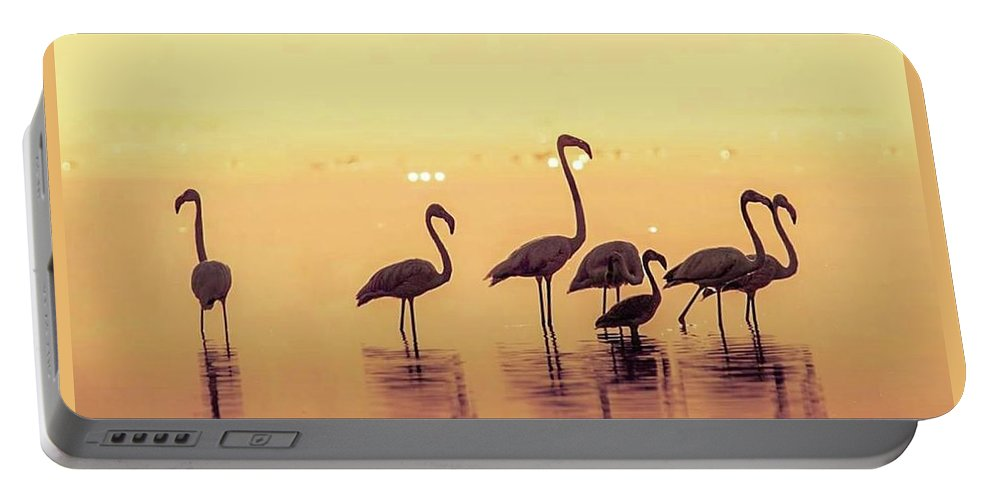 Sunset Portable Battery Charger featuring the photograph Flamingo During Sunset by Smita Shitole