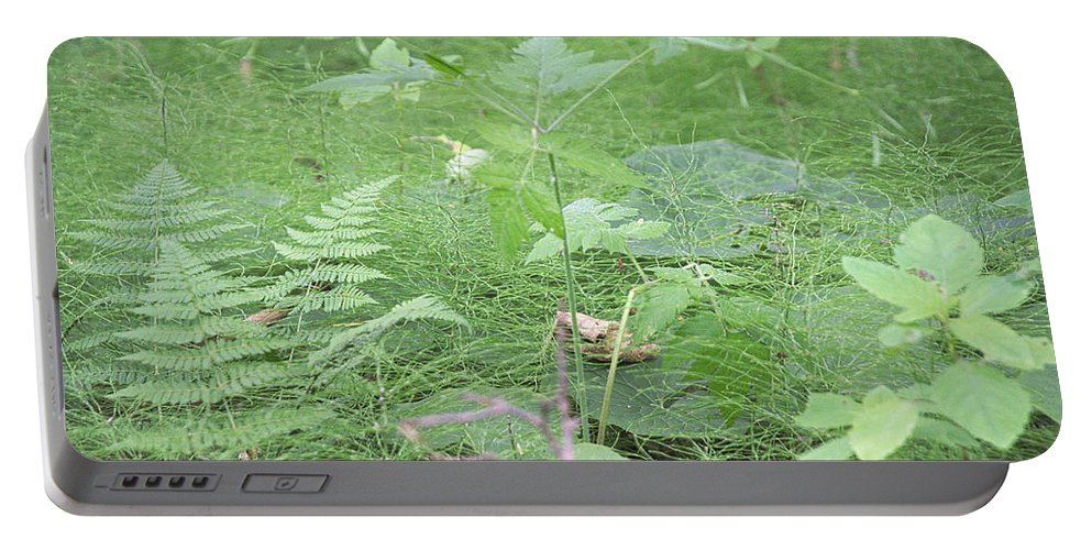 Ferns Portable Battery Charger featuring the photograph Fluffy Ferns by Timothy Ruf
