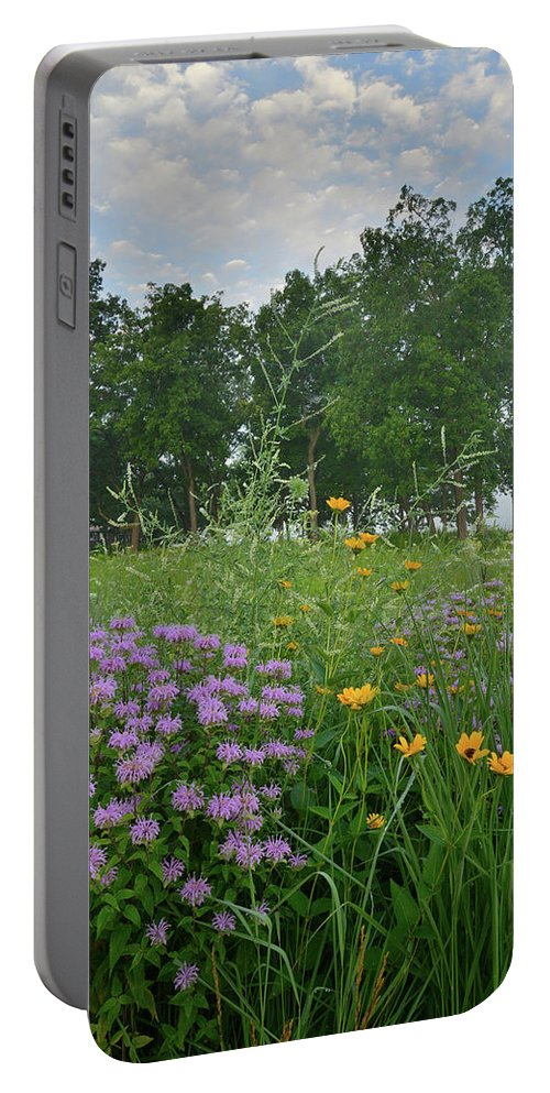Black Eyed Susan Portable Battery Charger featuring the photograph Foggy Morning At Glacial Park by Ray Mathis