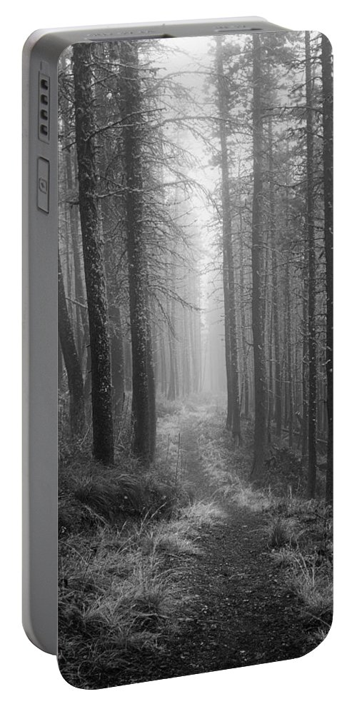 Rodgers Pass Portable Battery Charger featuring the photograph Forest Path by Leland D Howard