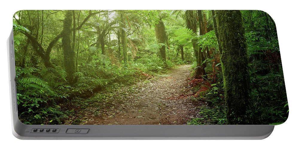 Rain Forest Portable Battery Charger featuring the photograph Forest Walking Trail 1 by Les Cunliffe