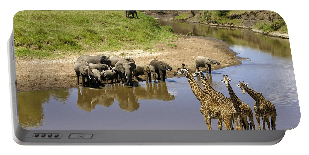 Africa Portable Battery Charger featuring the photograph Garden Of Eden by Michele Burgess