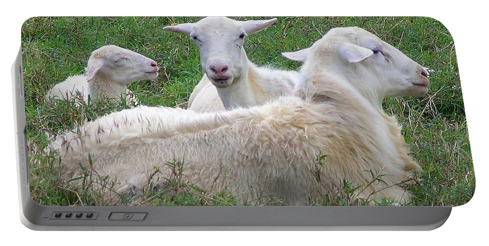 White Animals Portable Battery Charger featuring the photograph Goat Family by Mary Deal