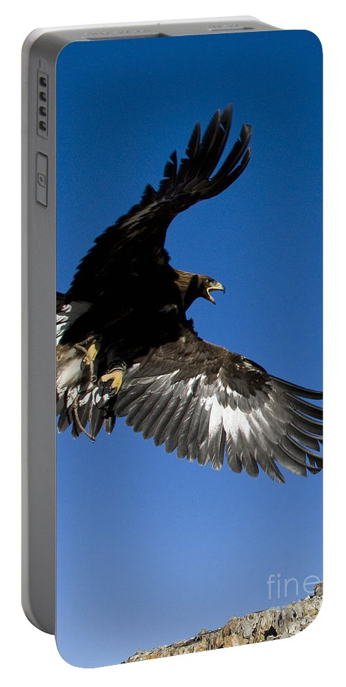 Golden Eagle Portable Battery Charger featuring the photograph Golden Eagle by Jean-Louis Klein & Marie-Luce Hubert