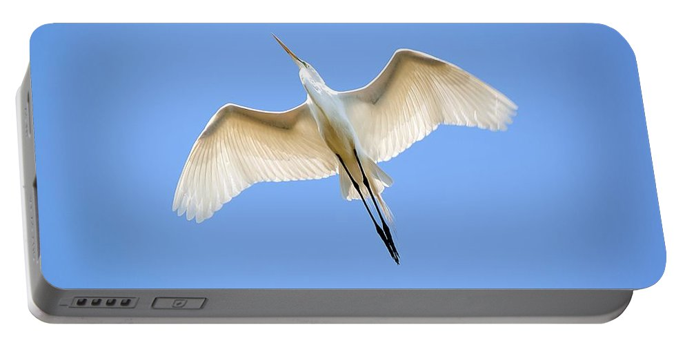 Egret Portable Battery Charger featuring the photograph Great Egret In Flight by Kenneth Albin