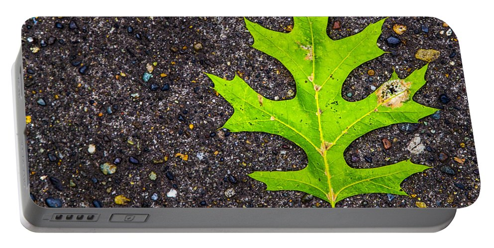 Seattle Portable Battery Charger featuring the photograph Green Leaf by Angus Hooper Iii