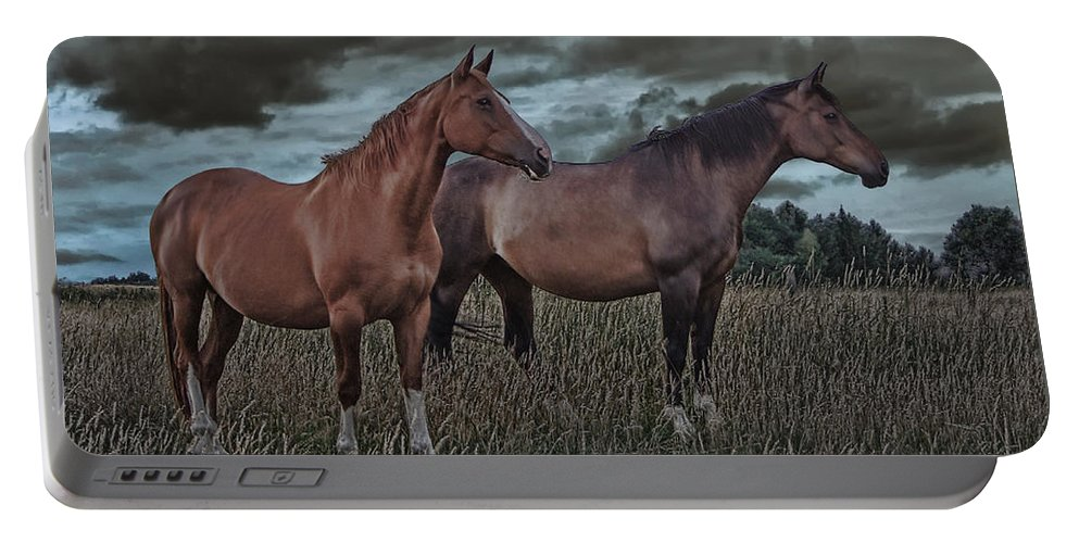 Animal Portable Battery Charger featuring the photograph Hanoverians by Joachim G Pinkawa