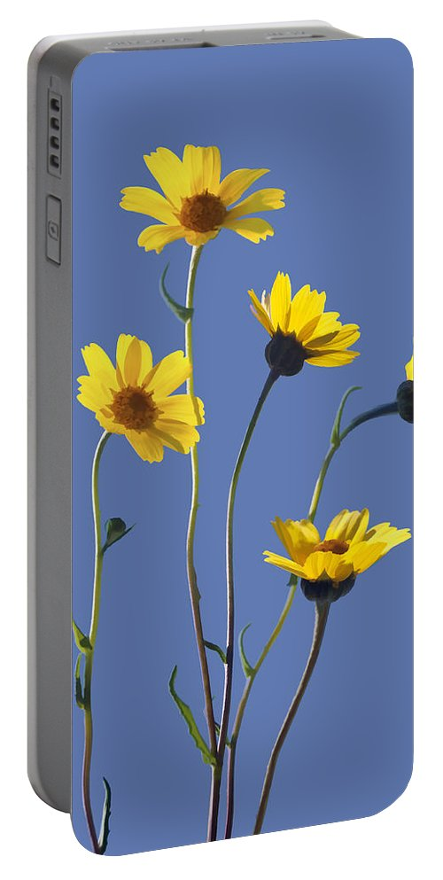 Daisy Portable Battery Charger featuring the digital art Happy Daisies II by Sharon Foster